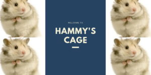 Read more about the article Welcome To Hammy's Cage